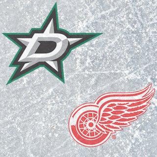 Stars v Red Wings 320.jpg